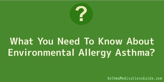 What You Need To Know About Environmental Allergy Asthma